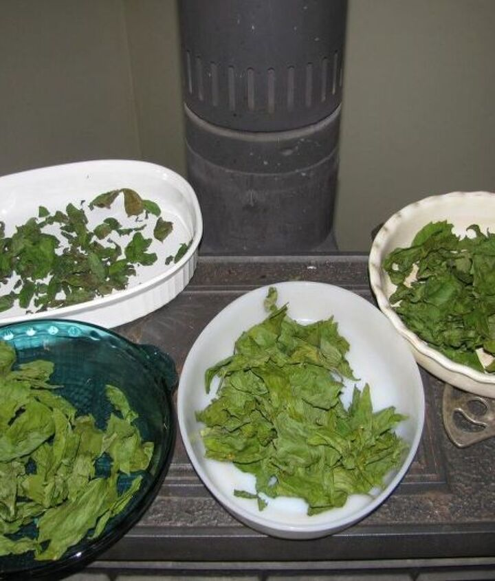 dry herbs without a dehydrator