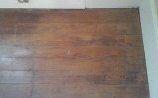 q what can i use to get rid of cat urine smell on hardwood floors