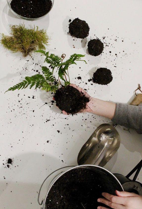 Create the Soil Ball