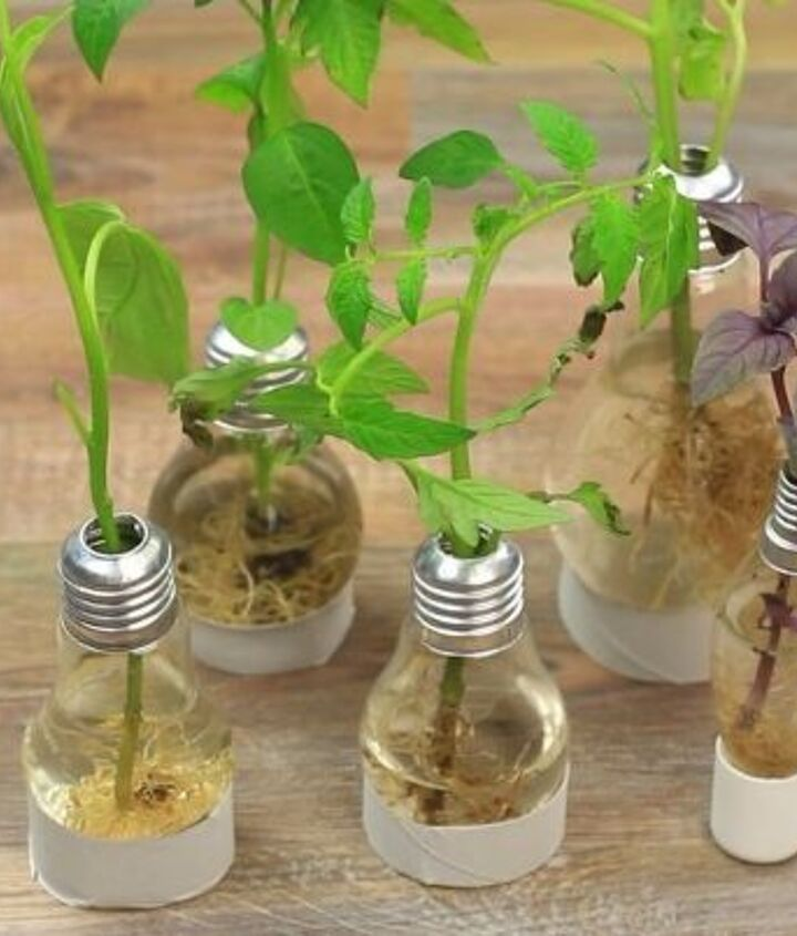 s 18 clever ways to repurpose old light bulbs, Mini Light Bulb Vases