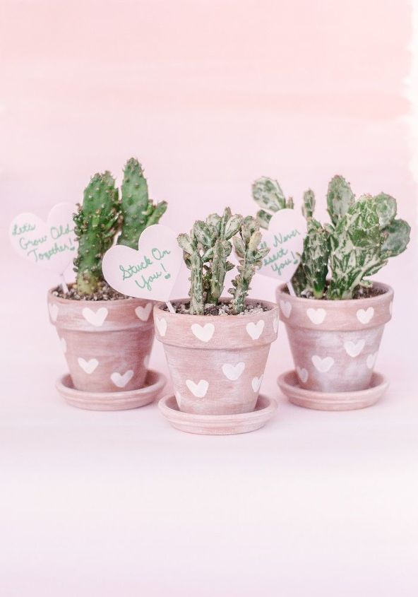 diy heart print terra cotta cactus pots