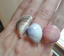 diy seashell rings
