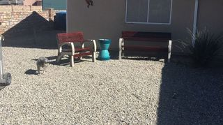 , Bench is finished and the color outstanding in the Arizona sun