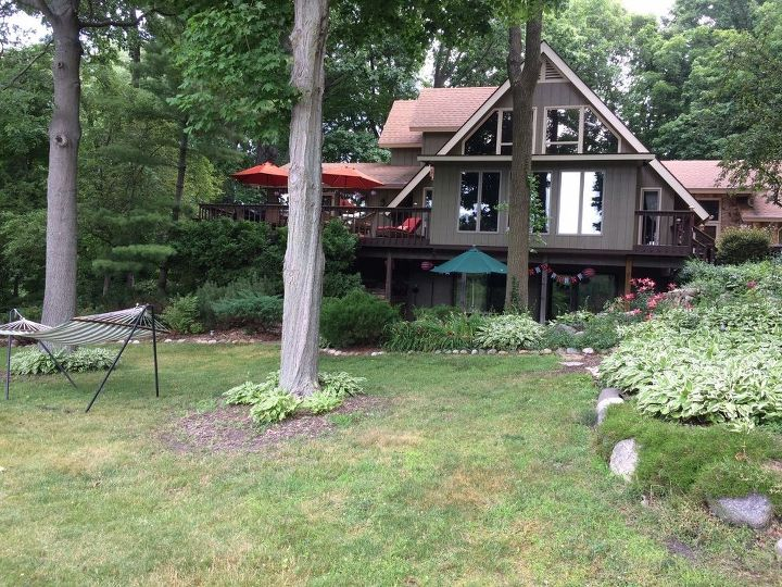 q what to do with an extremely shady yard so tired of hostas
