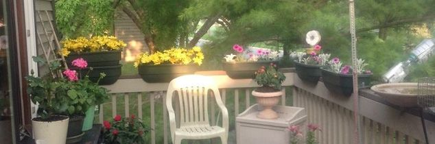 q what plants can i use for a deck garden