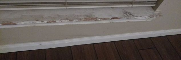 q how to fix window sill chewed up by dogs