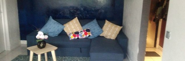q good evening i have a blue sofa i would like to have your opinion abou