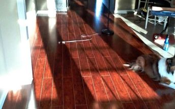 install your own laminate flooring