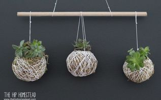 how to make a hanging succulent garden, My Simple Hanging Succulent Garden