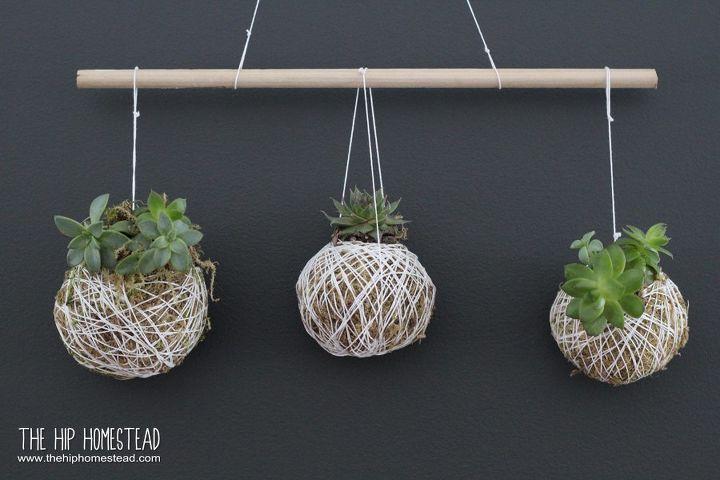 My Simple Hanging Succulent Garden
