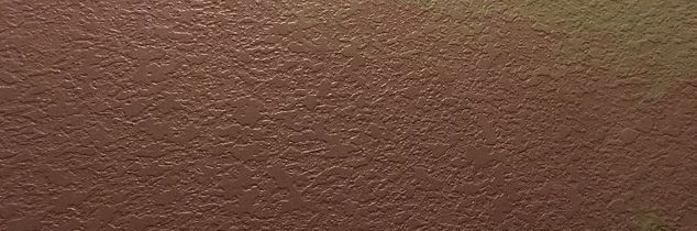 q i bleach washed my walls in rental and it took some paint off help