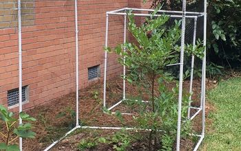 PVC Blueberry Bush Covers