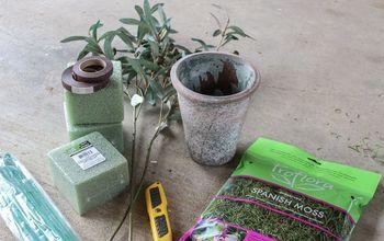 Olive Tree Topiary DIY