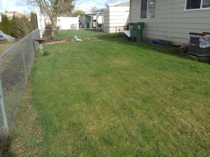 q how do you go about yard transformation from grass to desert like