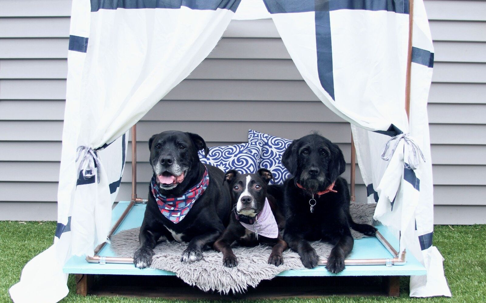 s upgrade your backyard with these 30 clever ideas, Give your dogs a cute outdoor lounger