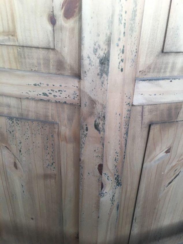 q removing mildew or mold