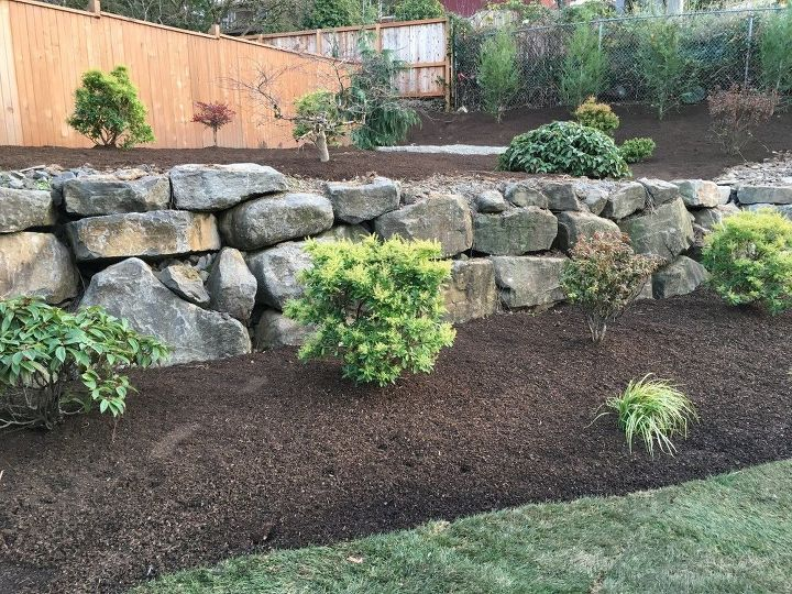 q what type of plants can be used to plant in boulder wall crevices