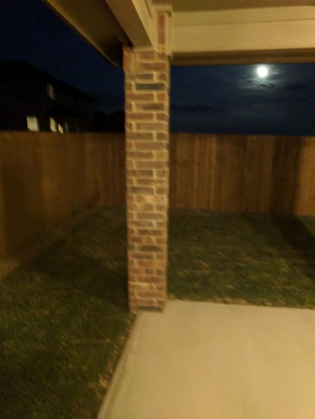 q what landscaping should i do with a small back yard