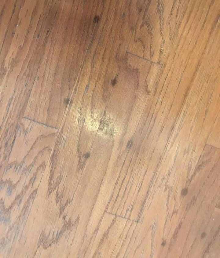 q what are the spots on my hardwood floor