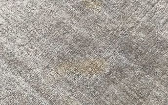 q is there a way to remove pet stains from a wool carpet
