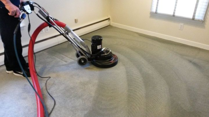 reasons why you should not opt for diy carpet cleaning