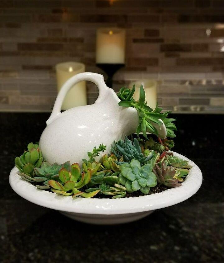 basin full of succulents