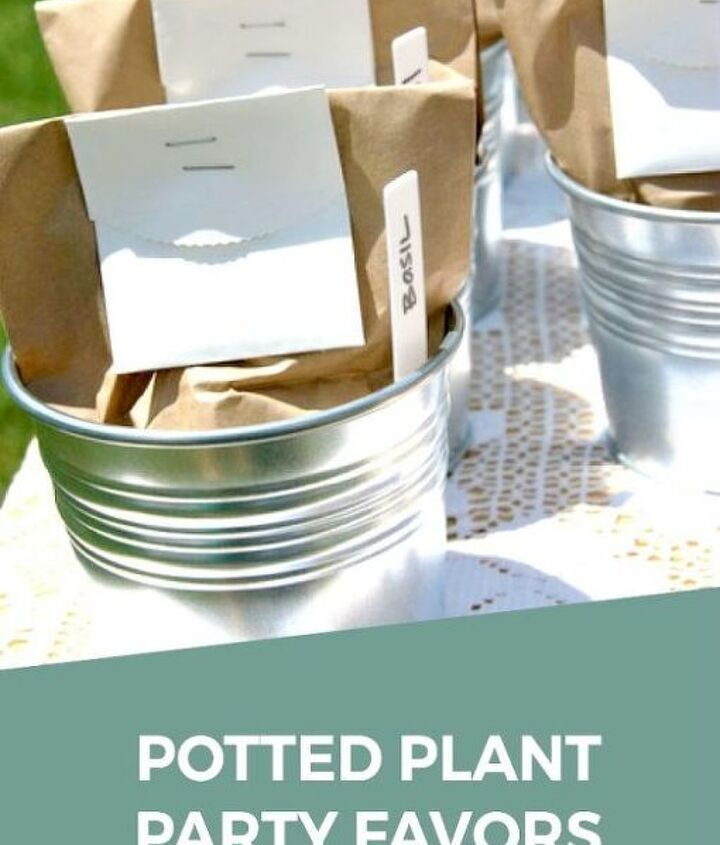 how to make plant seed party favors