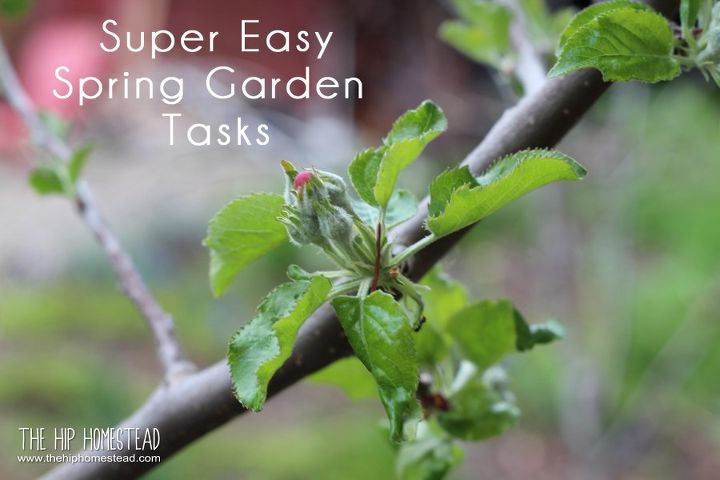 super easy spring garden tasks
