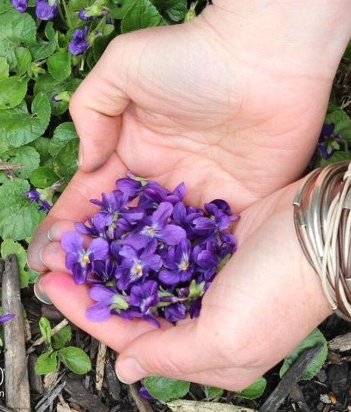 super easy spring garden tasks