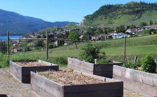 3 types of gardens for new vegetable gardeners
