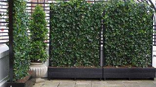 , Artificial ivy leaf vertical panels