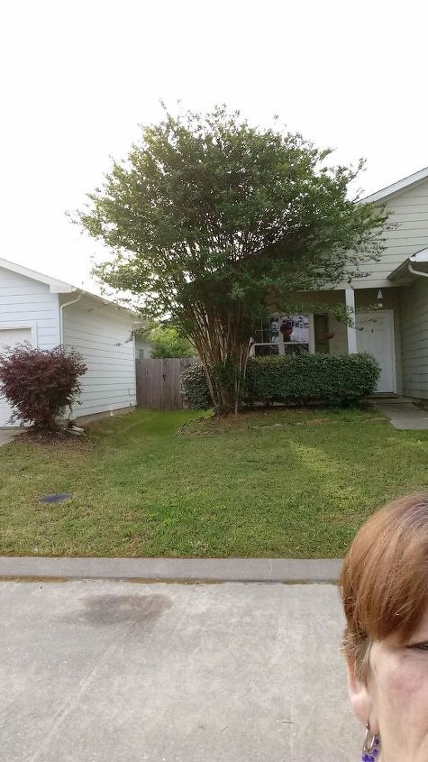 q want to add some color to front yard but it slopes ideas