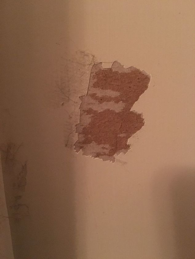 I have s spot on my wall where the drywall peeled off from a piece