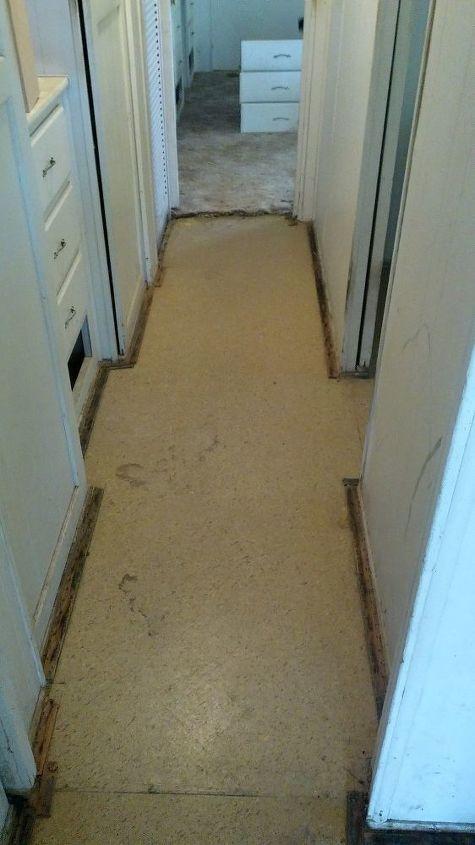 dark and lean hallway revived