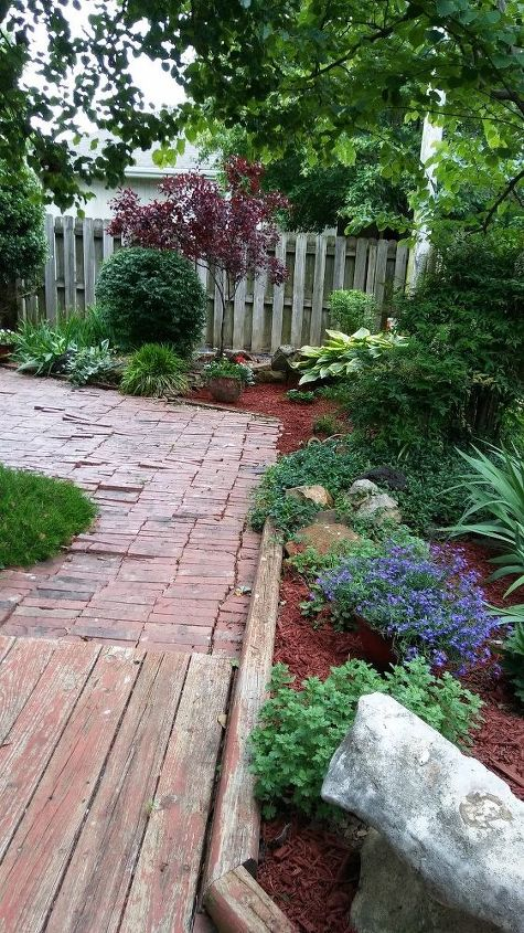 q suggestions what to cover tree roots but still have a walkway w bricks