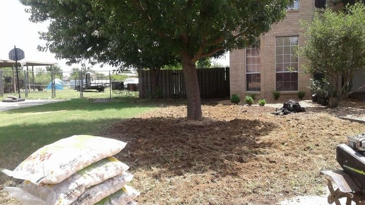 shaded front yard fix