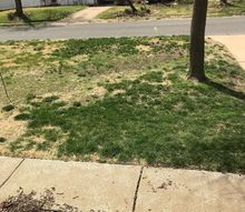 q we ve had several lawn treatment co work on our front yard no help