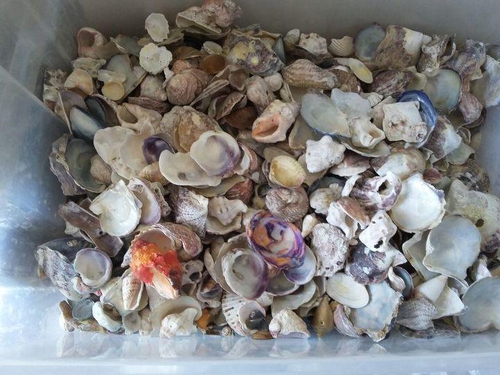 q sea shells mosaic apply technique