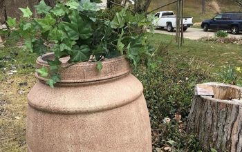 from an olive barrel to a barrel planter