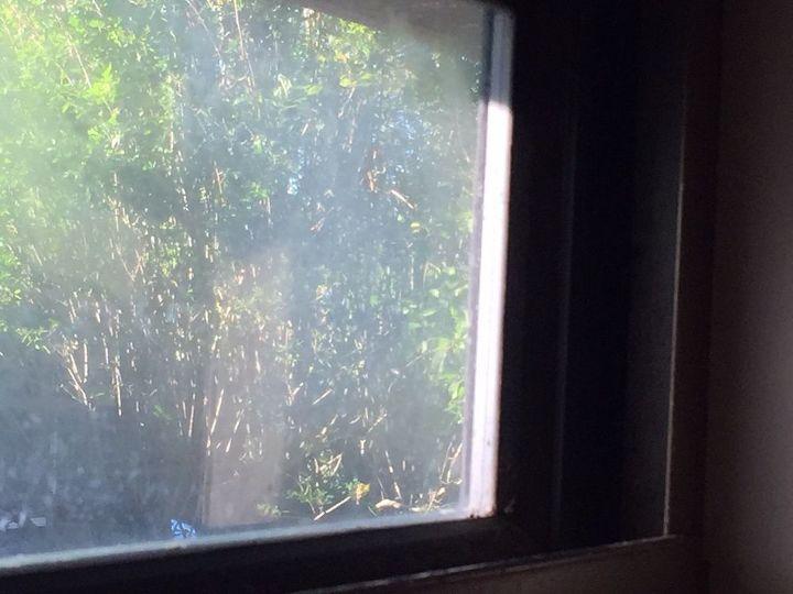 q very narrow window needs replacement