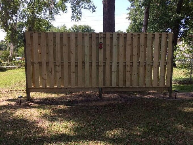 q have a fence that needs some love plants ect what do you suggest