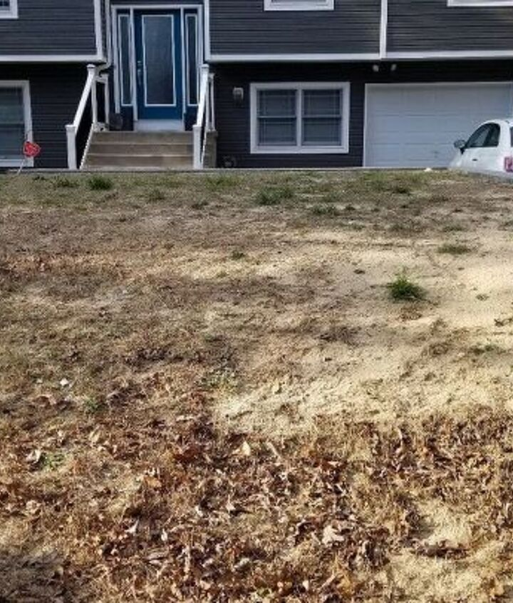 q help our lawn