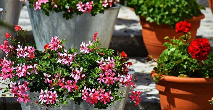 best porch planter ideas flowers for sun and shade