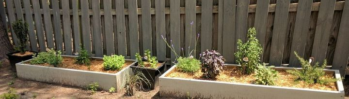 Raised Bed Herb Gardens
