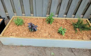 build two raised herb gardens for less than 50, One of the newly mulched beds