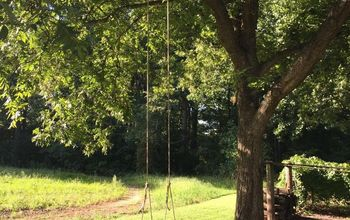 diy backyard rope swing