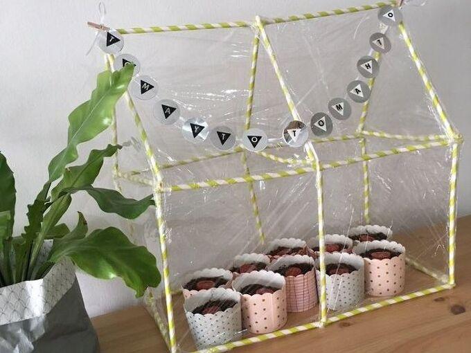 tomayto tomahto a mini green house