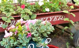 tennis shoe planters for summer
