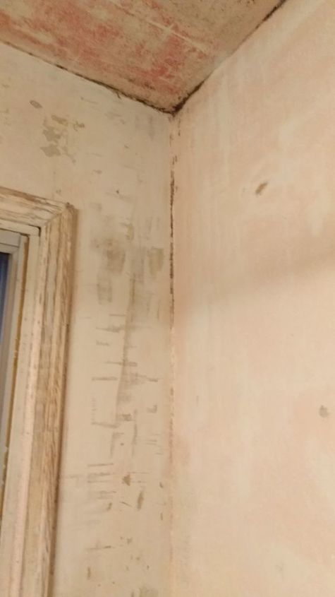 q bathroom walls