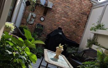 Patio Garden...